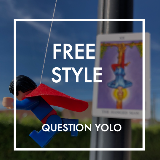Question freestyle-yolo